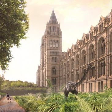 'Fossilplants' at the Natural History Museum, London!