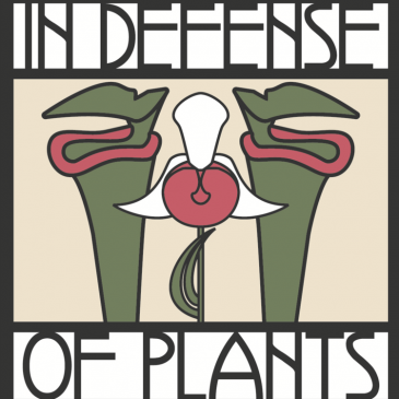 Growing Gondwana on the 'In Defence of Plants' podcast.